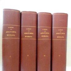 Libros antiguos: TRATADO DE ANATOMÍA HUMANA, POR L. TESTUT. 4 TOMOS. 1942 Y 1943. Lote 56811333
