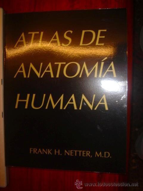 atlas anatomia humana por frank h. netter m.d. - Comprar Libros ...