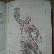 Libros antiguos: TRATADO DE ANATOMÍA HUMANA (1869-1874) / JULIÁN CALLEJA SÁNCHEZ. MUCHAS ILUSTRACIONES. 3 VOLÚMENES.. Lote 34036506