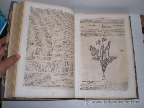 Libros antiguos: Botica. La Oficina de Farmacia - Dorvault - 1ª Edición (1872-1878). 2 Volúmenes (obra completa) - Foto 4 - 38105203