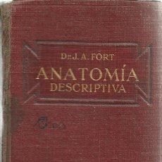 Libros antiguos: ANATOMÍA DESCRIPTIVA. J.A. FORT. EDITORIAL GUSTAVO GILI. BARCELONA. 1925. Lote 39541804
