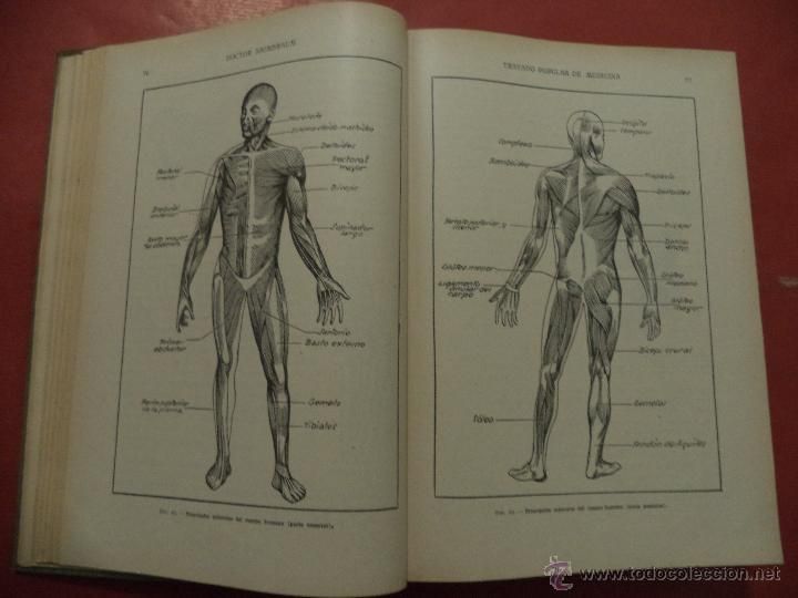 Libros antiguos: TRATADO POPULAR DE MEDICINA. ANATOMÍA - FISIOLOGÍA - HIGIENE - TERAPÉUTICA. Dr. SAIMBRAUM. - Foto 3 - 42493535