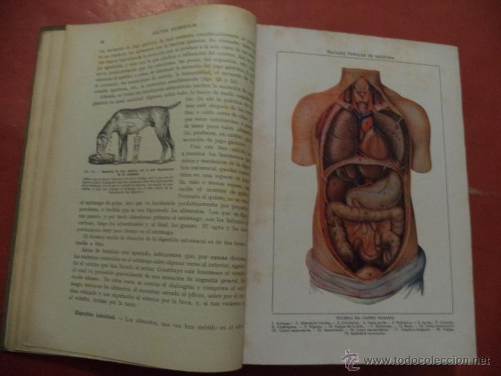 Libros antiguos: TRATADO POPULAR DE MEDICINA. ANATOMÍA - FISIOLOGÍA - HIGIENE - TERAPÉUTICA. Dr. SAIMBRAUM. - Foto 4 - 42493535
