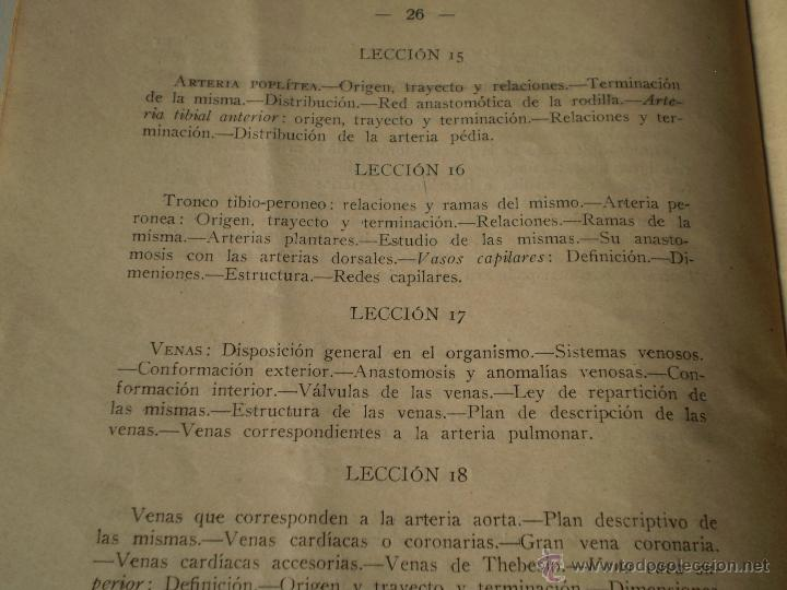 dr.manuel seres.programa de anatomia descriptiv - Comprar Libros ...