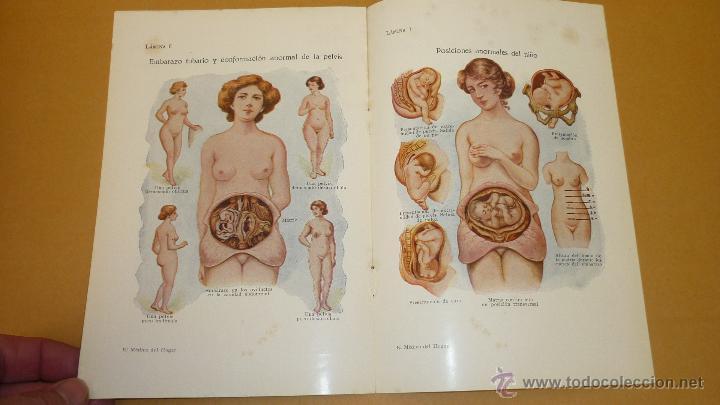 Libros antiguos: EL MEDICO DEL HOGAR. Jenny Springer. Sopena. Año 1936. Muy ilustrado con grabados y libreto adjunto - Foto 6 - 44374111