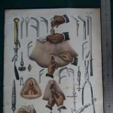 Libros antiguos: LITOGRAFIA - DEL ATLAS DE ANATOMIA HUMANA DE BOURGERY Y JACOB - PARIS - 1831 - 1854 -. Lote 44821605