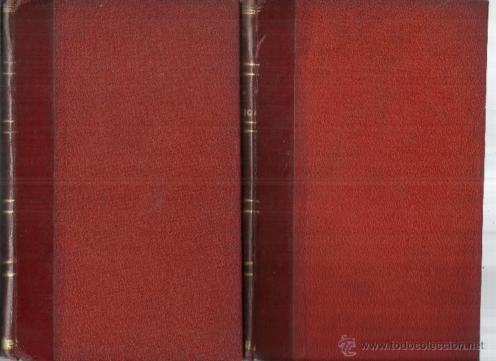 Libros antiguos: HIGIENE PRIVADA Y PÚBLICA. FRANCISCO JAVIER SANTERO. 2 TOMOS. EL COSMO EDITORIAL. MADRID. 1885 - Foto 3 - 45931918