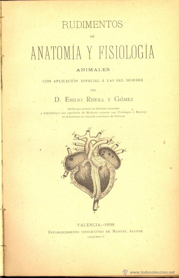 rudimentos de anatomía y fisiología, emilio rib - Comprar Libros ...