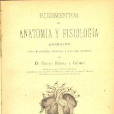 Libros antiguos: RUDIMENTOS DE ANATOMÍA Y FISIOLOGÍA, EMILIO RIBERA, ALUFRE, VALENCIA, 1898 CON DEDICATORIA. Lote 47935288