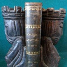 Libros antiguos: ANATOMIA HUMANA. MIOLOGIA. JULIAN CALLEJA SANCHEZ. VALLADOLID. 1872. Lote 49382448