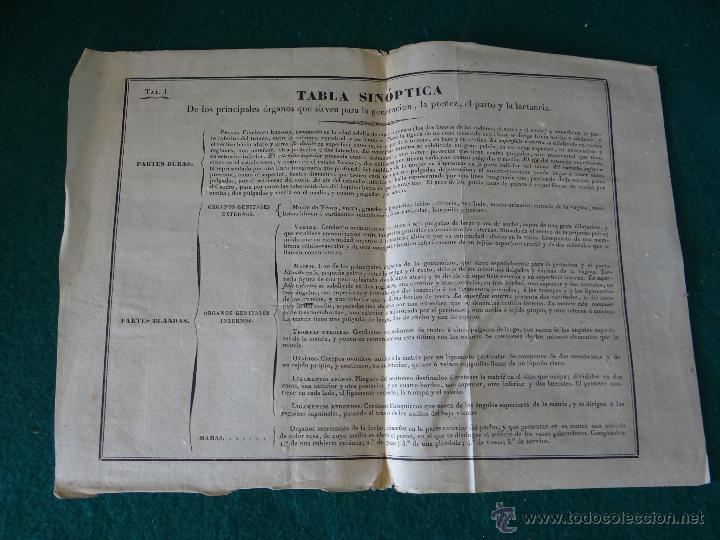 Libros antiguos: CURSO COMPLETO DE PARTOS POR JULIO HATIN . MADRID 1.835 (1ª EDICION) TOMO 1ºy2º. LITOGRAFIAS - Foto 15 - 49416557