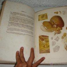 Libros antiguos: ATLAS DE ANATOMÍA PATOLÓGICA. DR. LANCEREAUX. 1874. LLENO DE LAMINAS ILUMINADAS.. Lote 50830393