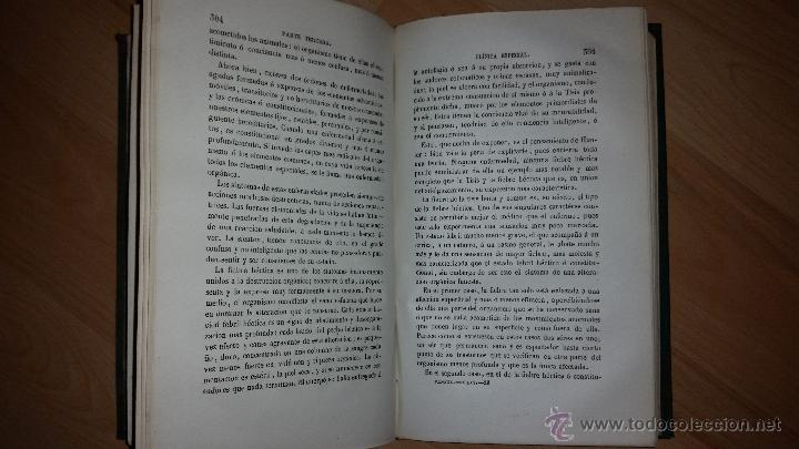 Libros antiguos: Estudios Generales y Prácticos sobre la Tisis - M. PIDOUX - Versión por Pablo León - MADRID - 1873 - Foto 4 - 52420671