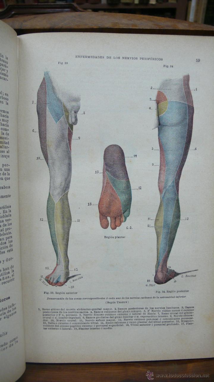 Libros antiguos: TRATADO DE PATOLOGÍA INTERNA Y TERAPÉUTICA. HERMANN EICHHORST. 3 VOL. 1894 - Foto 6 - 53319978