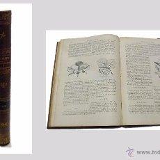 Libros antiguos: DR. RENGADE,LA VIDA NORMAL Y LA SALUD -PLANTAS QUE CURAN Y PLANTAS QUE MATAN-1886. Lote 53696986