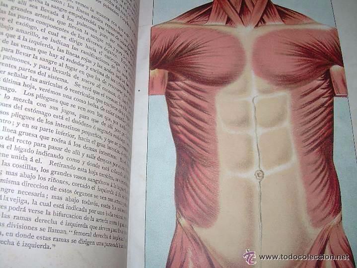 Libros antiguos: EL MEDICO PRACTICO Y DOMESTICO ENCICLOPEDIA DE MEDICINA,ENFERMEDADES DE LOS TROPICOS- AÑO 1.892 - Foto 5 - 53698021