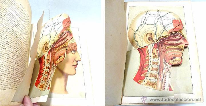 Libros antiguos: EL MEDICO PRACTICO Y DOMESTICO ENCICLOPEDIA DE MEDICINA,ENFERMEDADES DE LOS TROPICOS- AÑO 1.892 - Foto 6 - 53698021
