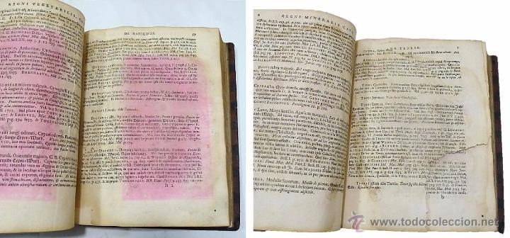 Libros antiguos: DANIELE WILHELMO TRILLERO- DISPENSATORIUM PHARMACEUTICUM UNIVERSALE SIVE THESAURUS- 1764 - Foto 9 - 53772747