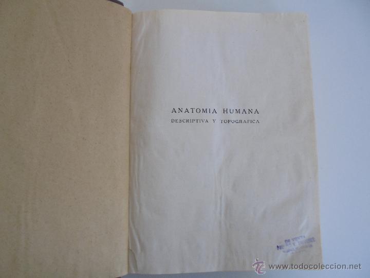 Libros antiguos: ANATOMIA HUMANA DESCRIPTIVA Y TOPOGRAFICA. H. ROUVIERE. TOMO I Y II. DEDICADO Y FIRMADO POR EL AUTOR - Foto 11 - 54045972