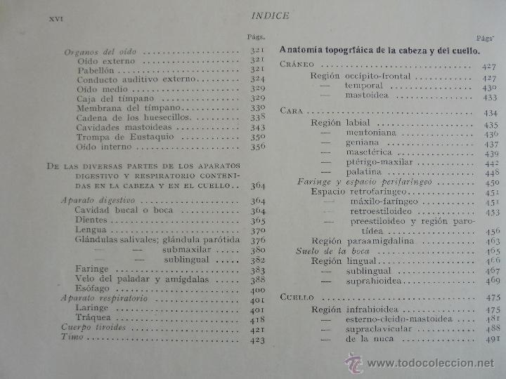 Libros antiguos: ANATOMIA HUMANA DESCRIPTIVA Y TOPOGRAFICA. H. ROUVIERE. TOMO I Y II. DEDICADO Y FIRMADO POR EL AUTOR - Foto 15 - 54045972
