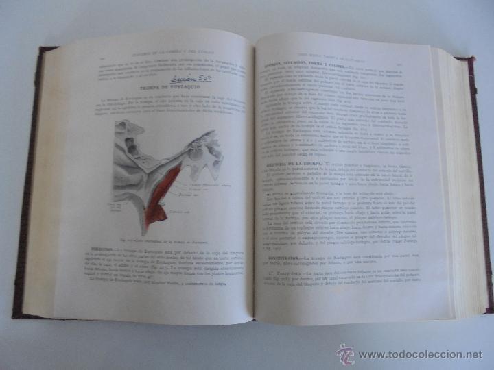 Libros antiguos: ANATOMIA HUMANA DESCRIPTIVA Y TOPOGRAFICA. H. ROUVIERE. TOMO I Y II. DEDICADO Y FIRMADO POR EL AUTOR - Foto 21 - 54045972