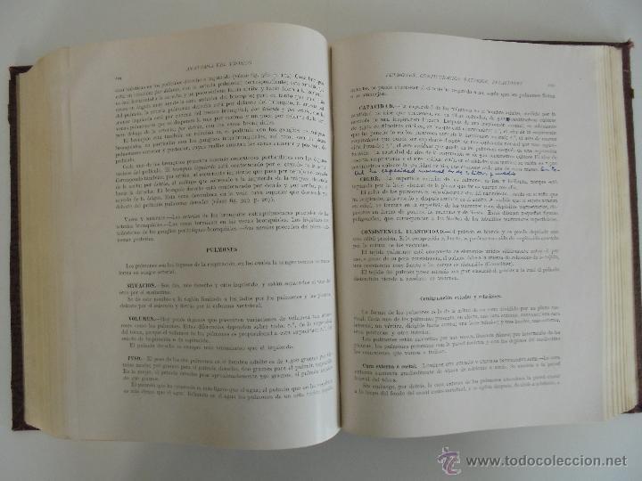 Libros antiguos: ANATOMIA HUMANA DESCRIPTIVA Y TOPOGRAFICA. H. ROUVIERE. TOMO I Y II. DEDICADO Y FIRMADO POR EL AUTOR - Foto 35 - 54045972