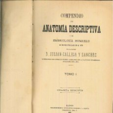 Libros antiguos: COMPENDIO DE ANATOMÍA DESCRIPTIVA Y DE EMBRIOLOGÍA HUMANAS. JULIÁN CALLEJA SÁNCHEZ. Lote 54121761