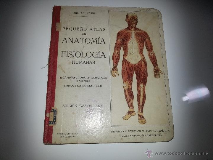 pequeño atlas de anatomía y fisiología humanas - Comprar Libros ...