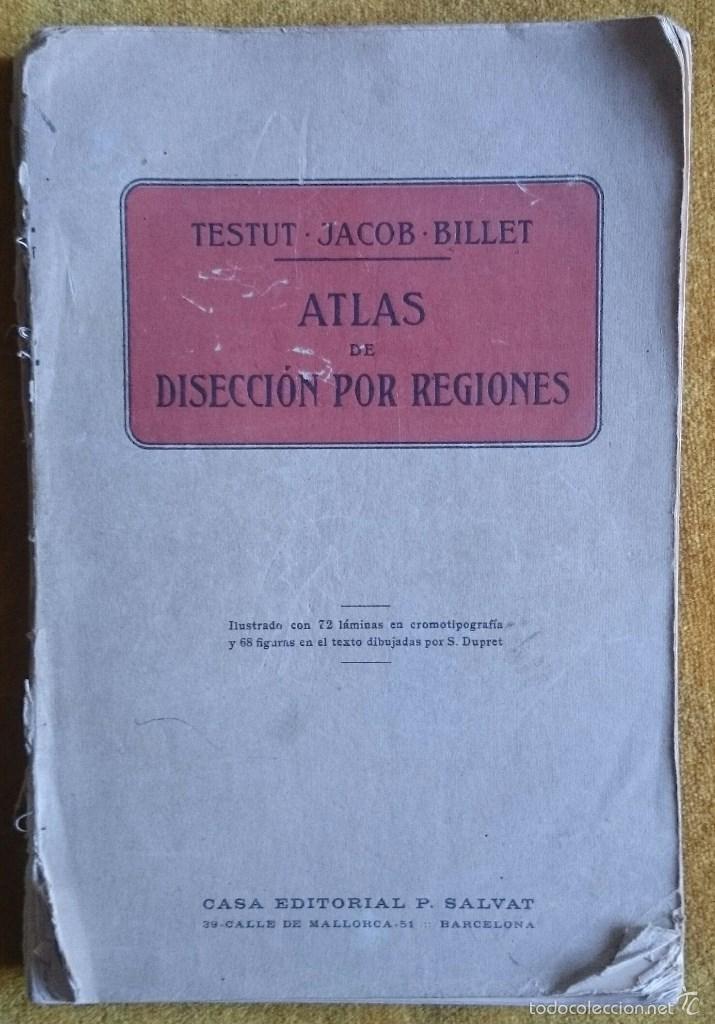 libro disecciones testut