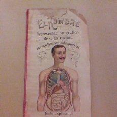 Libros antiguos: ANTIGUO RARO LIBRO EL HOMBRE 5 LAMINAS TROQUELADAS DR RAFAEL DEL VALLE ED BAILLY BAILLIERE MADRID. Lote 57448012
