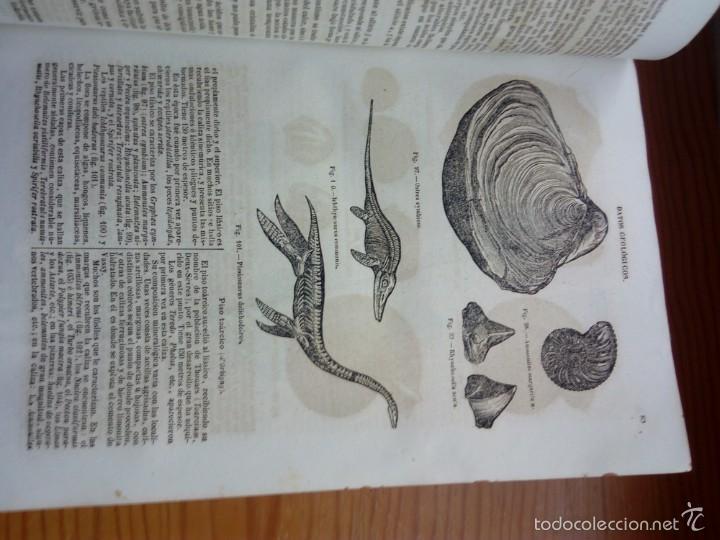 Libros antiguos: DORVAULT, BOTICA LA OFICINA DE FARMACIA.PRIMERA EDICION. - Foto 10 - 57719017