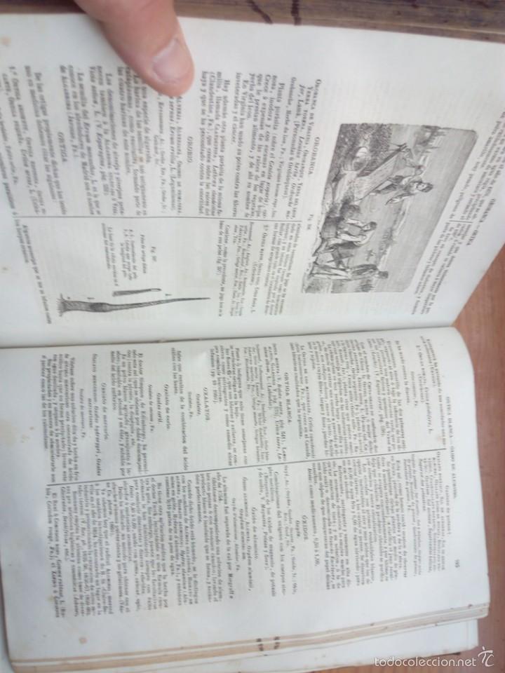 Libros antiguos: DORVAULT, BOTICA LA OFICINA DE FARMACIA.PRIMERA EDICION. - Foto 11 - 57719017