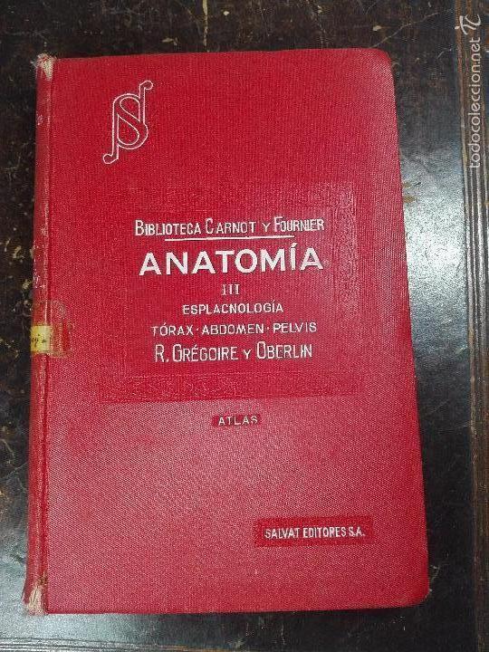 anatomía iii - esplacnología-tórax-abdomen-pelv - Comprar Libros ...