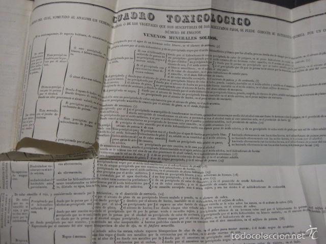 Libros antiguos: ELEMENTOS DE MEDICINA Y CIRUJIA LEGAL-PEIRO RODRIGO-ZARAGOZA AÑO 1832-DESPLEGABLES-VER FOTOS-(XL-50) - Foto 19 - 58191781