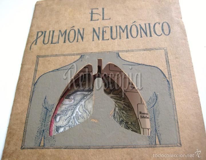 Libros antiguos: EL PULMÓN NEUMÓNICO CARACTERÍSTICAS FÍSICAS Y PATOLOGÍA. DENVER CHEMICAL. NY AÑOS 20 - 30 MEDICINA - Foto 2 - 221885680