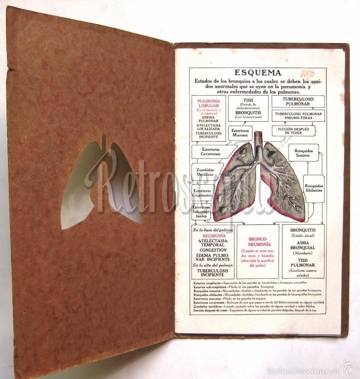 Libros antiguos: EL PULMÓN NEUMÓNICO CARACTERÍSTICAS FÍSICAS Y PATOLOGÍA. DENVER CHEMICAL. NY AÑOS 20 - 30 MEDICINA - Foto 3 - 221885680