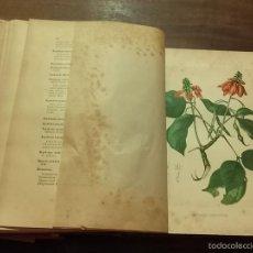 Libros antiguos: 1891 ENCICLOPEDIA FARMACEUTICA DICCIONARIO GENERAL DE FARMACIA TEÓRICO-PRACTICO, D. M. PÉREZ MINGUEZ. Lote 58640827