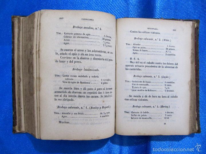 Libros antiguos: FORMULARIO UNIVERSAL DE VETERINARIA. NICOLÁS CASAS DE MENDOZA. LIBRERÍA DE D. PABLO CALLEJA, 1868. - Foto 7 - 60340639