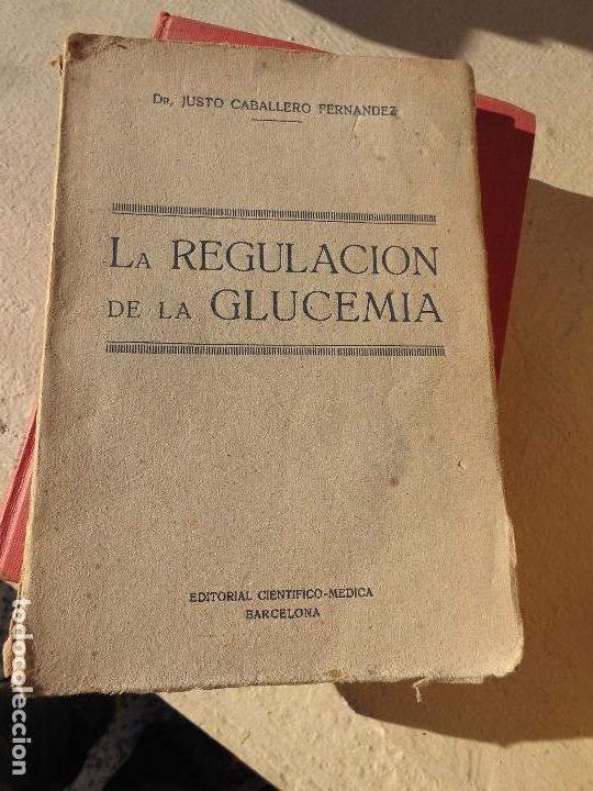 LIBRO LA REGULACIÓN DE LA GLUCEMIA 1926 ED. CIENTIFICO MEDICA L-6922-154 (Libros Antiguos, Raros y Curiosos - Ciencias, Manuales y Oficios - Medicina, Farmacia y Salud)