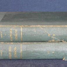 Libros antiguos: TESTUT TRATADO DE ANATOMIA HUMANA TOMO IV LIBROS 1 Y 2 COMPLETO SALVAT EDITORES 1934 - MEDICINA OBRA. Lote 66751370