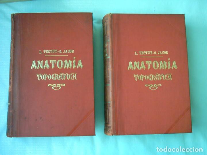 l. testut / o. jacob. tratado de anatomía topog - Comprar Libros ...