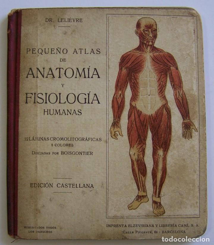 circa 1920´s * atlas de anatomia y fisiologia * - Comprar Libros ...