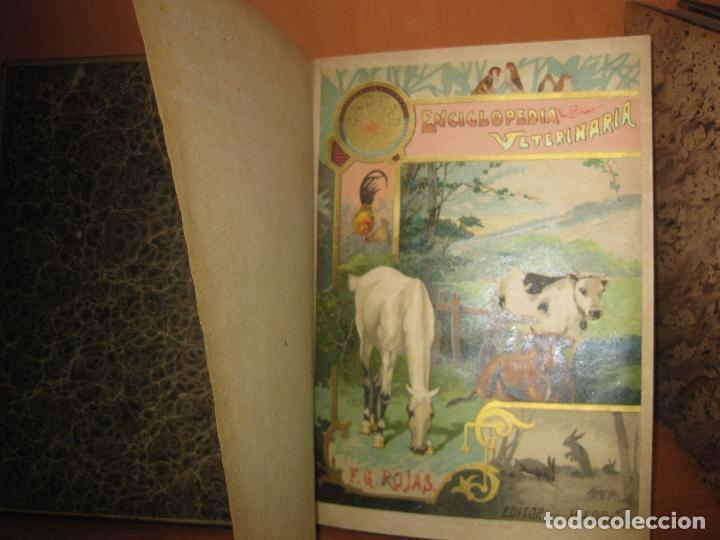 Libros antiguos: ENCICLOPEDIA VETERINARIA. C, CADEAC. 12 VOLUMENES. FELIPE GONZALEZ ROJAS EDITOR. 1903. - Foto 2 - 72149535