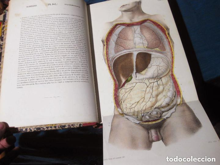 atlas de anatomia descriptiva. bonamy, broca. p - Comprar Libros ...