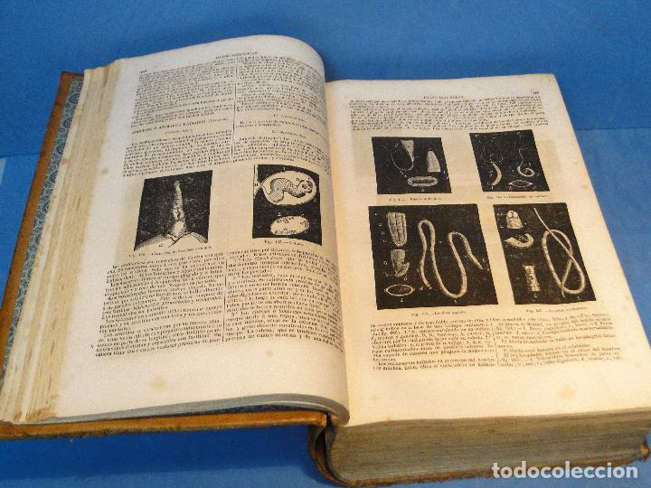 Libros antiguos: BOTICA: LA OFICINA DE FARMACIA.--DORVAULT( 1ª edi.ESPAÑOLA DE LA 7ª FRANCESA) - Foto 3 - 73323047