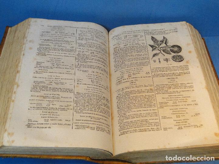 Libros antiguos: BOTICA: LA OFICINA DE FARMACIA.--DORVAULT( 1ª edi.ESPAÑOLA DE LA 7ª FRANCESA) - Foto 8 - 73323047