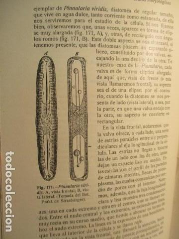 Libros antiguos: CITOLOGÍA, Parte Práctica, Técnica y Observación. - Pujiula,Jaime. - Foto 25 - 73512275