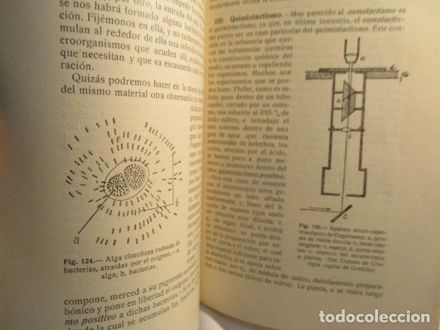 Libros antiguos: CITOLOGÍA, Parte Práctica, Técnica y Observación. - Pujiula,Jaime. - Foto 27 - 73512275