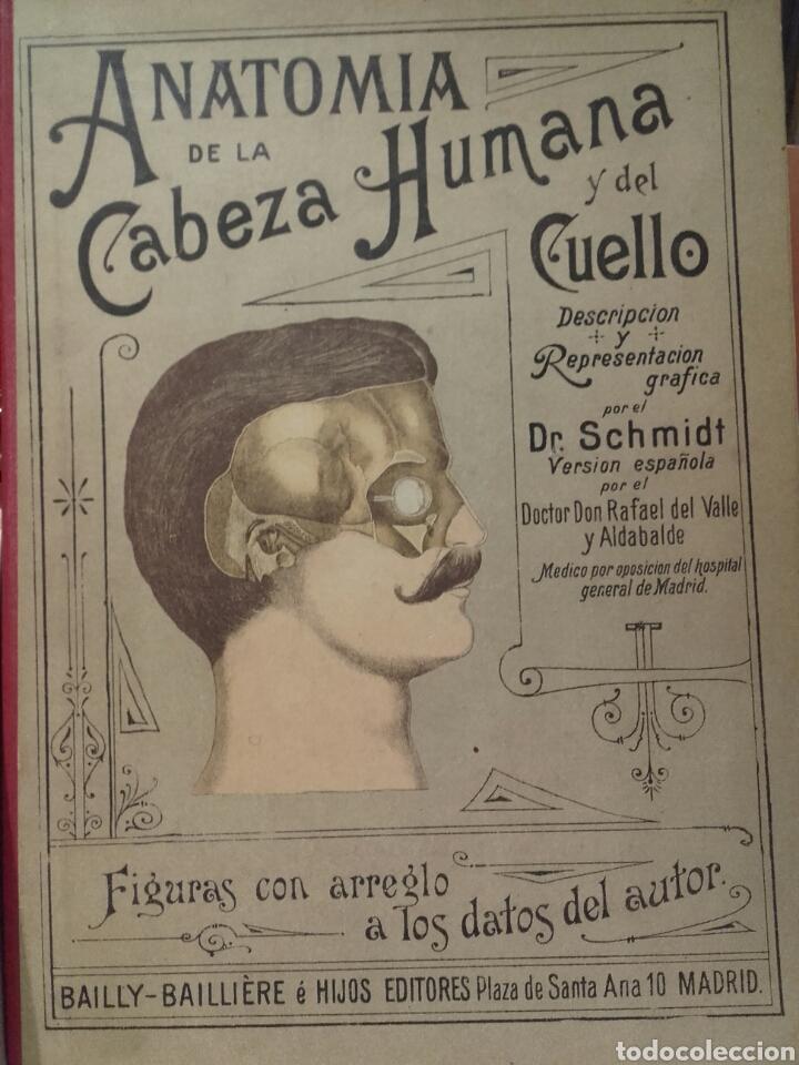 antiguo libro troquelado anatomía de la cabeza - Comprar Libros ...