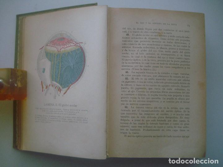 Libros antiguos: LIBRERIA GHOTICA. ROSSITER. GUÍA PRÁCTICA DE LA SALUD. TRATADO ILUSTRADO CON MUCHOS GRABADOS. - Foto 3 - 80296777